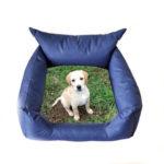 articoli personalizzati per cani e gatti